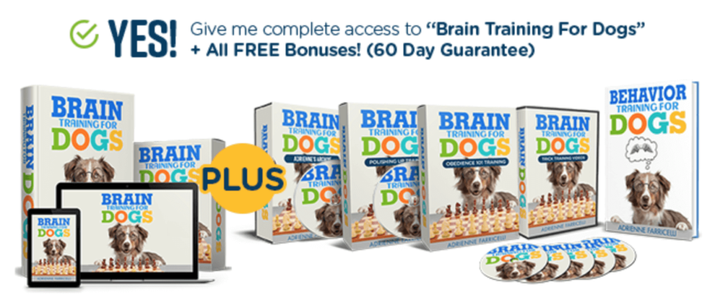 Brain Training For Dogs Free